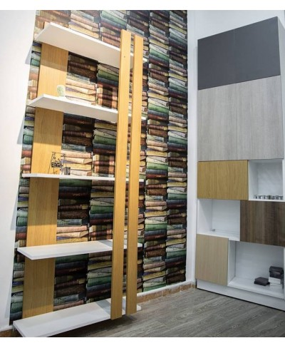 Meuble de Rangement + Bibliothèque